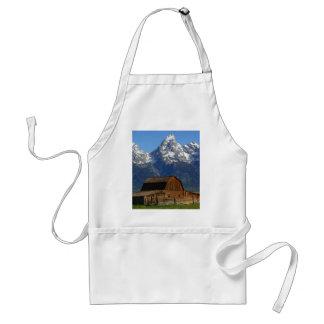 Mormon Row Barn Grand Teton National Park Apron