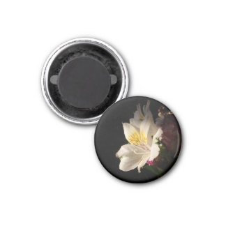 Morning Bloom 3 Cm Round Magnet