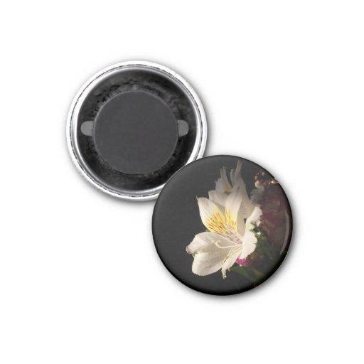 Morning Bloom Fridge Magnet