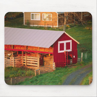 Morning chores on the farm. USA, Vermont, Mousepad