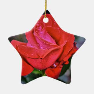 Morning Dew Christmas Ornament