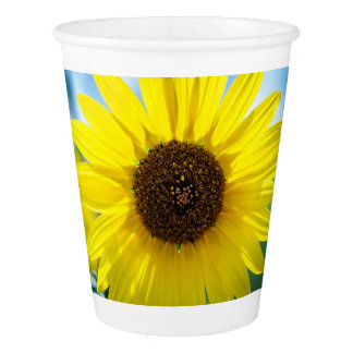 Morning Explosion Paper Cup
