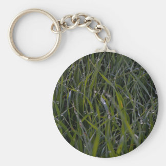 morning field basic round button key ring