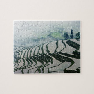 Morning Fog Above Rice Fields Jigsaw Puzzle