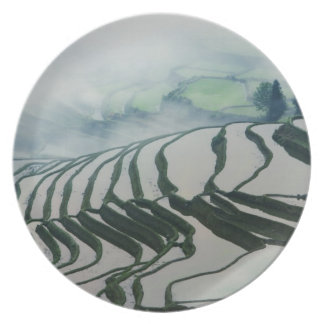 Morning Fog Above Rice Fields Party Plate