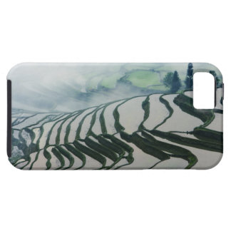 Morning Fog Above Rice Fields Tough iPhone 5 Case