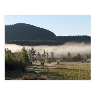 Morning Fog in the Adirondacks 5 Postcard