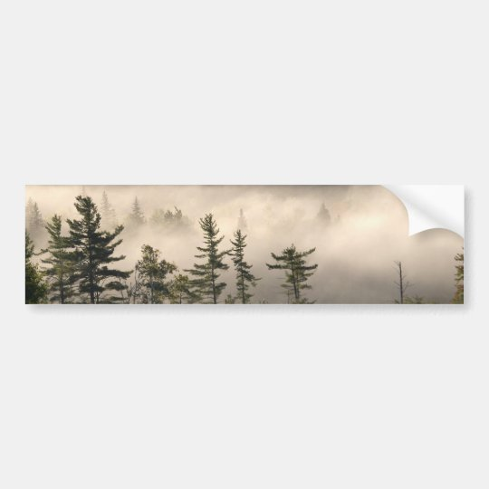 Morning Fog in the Adirondacks Bumper Sticker