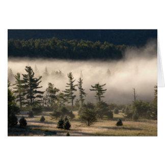 Morning Fog in the Adirondacks Card