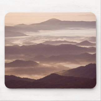 Morning fog in the southern Appalachian Mouse Mat