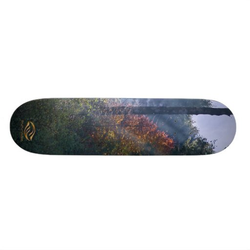 Morning Forest Fall Skate Boards