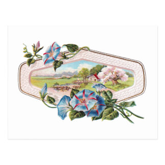 Morning Glories and a Home in the Country Postcard