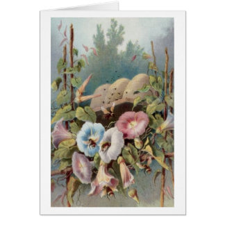 Morning Glories Note Card