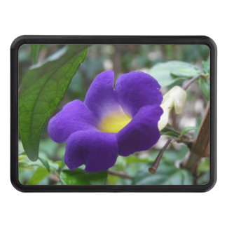 morning-glory-1.jpg tow hitch covers