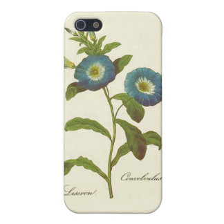 Morning Glory Blue Illustration Case For iPhone 5/5S