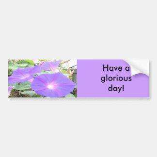 Morning Glory Car Bumper Sticker
