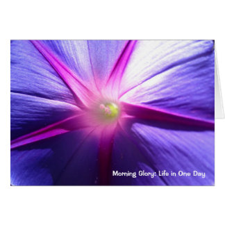 Morning Glory: Life In A Day (Motivational Series) Greeting Card