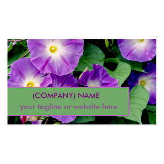 Morning Glory, Purple Trumpet Flowers Green Leaves Pack Of Standard Business Cards