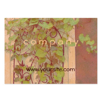 Morning Glory Trellis Orange Green Pack Of Chubby Business Cards