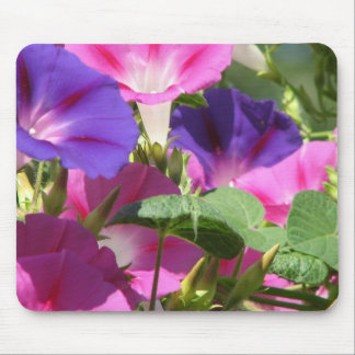 Morning Glory Vines Mouse Pad