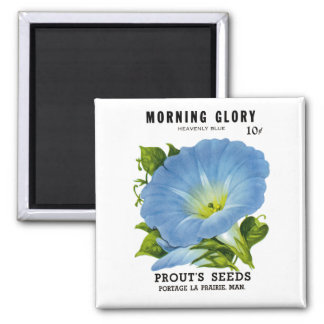 Morning Glory Vintage Seed Packet Square Magnet