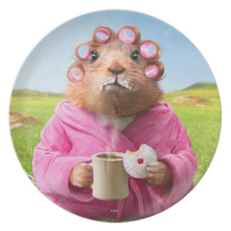 Morning Groundhog with Breakfast Donut and Coffee Plate