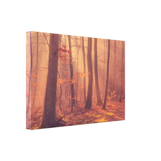 Morning in the forest in autumn canvas print