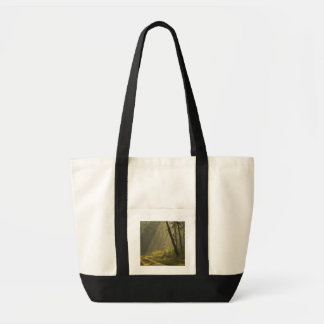 Morning light beams through trees in jungle tote bag