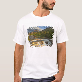 Morning light greets Swiftcurrent Falls in the T-Shirt