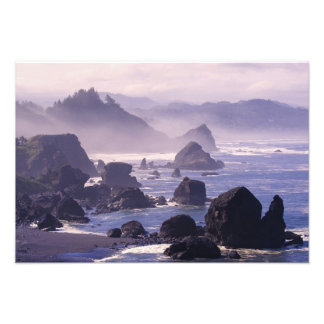 Morning mist along Oregon coast near Nesika, Photograph