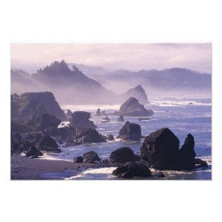 Morning mist along Oregon coast near Nesika, Photograph