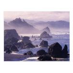 Morning mist along Oregon coast near Nesika, Postcard