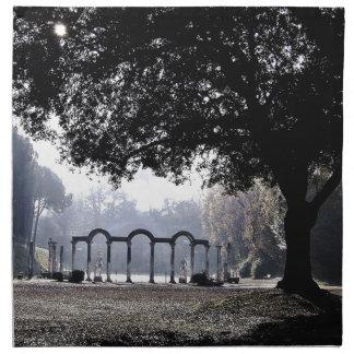 Morning mist at Ostia Cloth Napkin