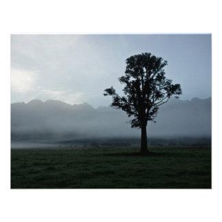 Morning Mist • Card / Invitation