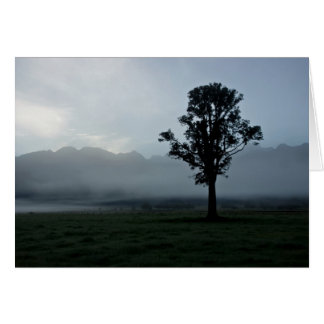 Morning Mist • Greeting Card