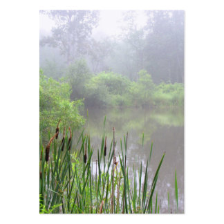Morning Mist on the Pond ATC Large Business Cards (Pack Of 100)