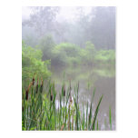 Morning Mist on the Pond Post Card