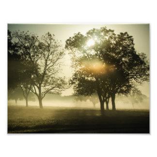 Morning Mist Photo Print
