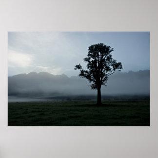 Morning Mist • Poster