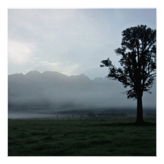 Morning Mist • Square Card Invitation