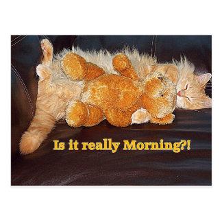 Morning?? Postcard