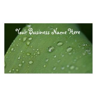 Morning Rain; Promotional Business Card