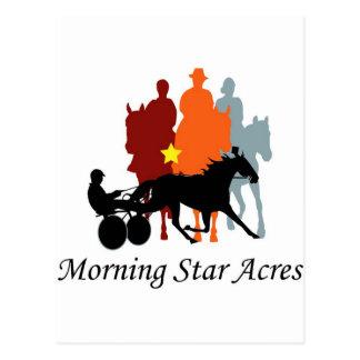 Morning Star Acres Postcard