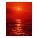 Morning Sun 4 Post Cards