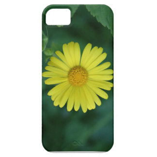 Morning Sun iPhone 5 Cover