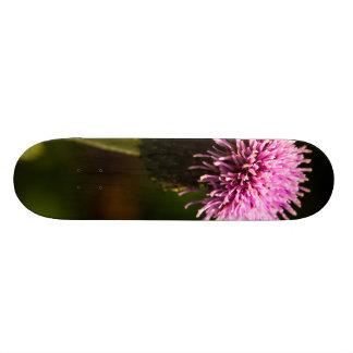 Morning Thistle Skate Boards