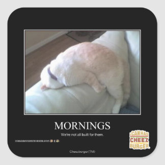 Mornings Square Sticker