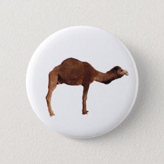 Moroccan Camel Button Pin Badge