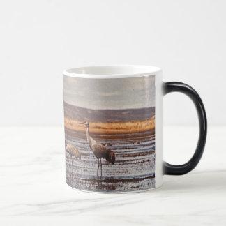 Morphing Mug / Sandhill Cranes @ Innoko NWR