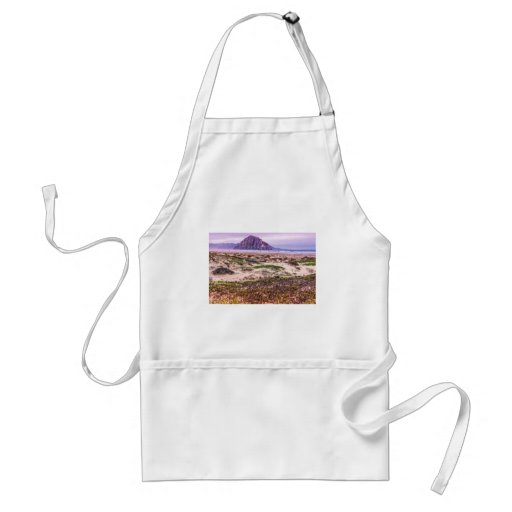 Morro Rock Dunes at Sunset Aprons